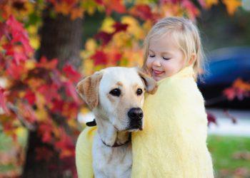 ცხოველის შესაძენად ბავშვისთვის ყველაზე კარგი ასაკია 5 -6 წელი.